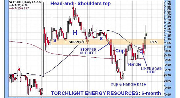 Torchlight Energy Resources: Update After Breakout
