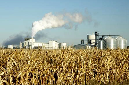 EPA: Biofuels bad for the environment
