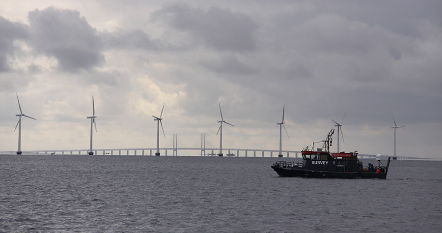 Coverage Initiated on Wind Farm Firm Poised for 'Highly Profitable' Growth