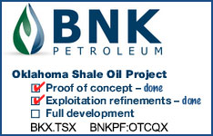 Learn More about BNK Petroleum Inc.
